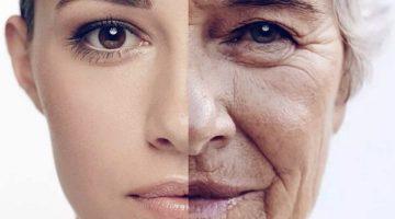 Внутренние и внешние признаки старения организма