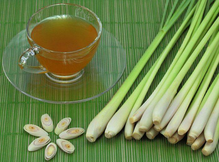 чай с лемонграссом - полезные свойства