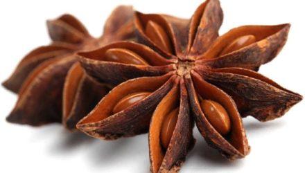 Бадьян — полезные свойства и противопоказания, чай, отличие от аниса