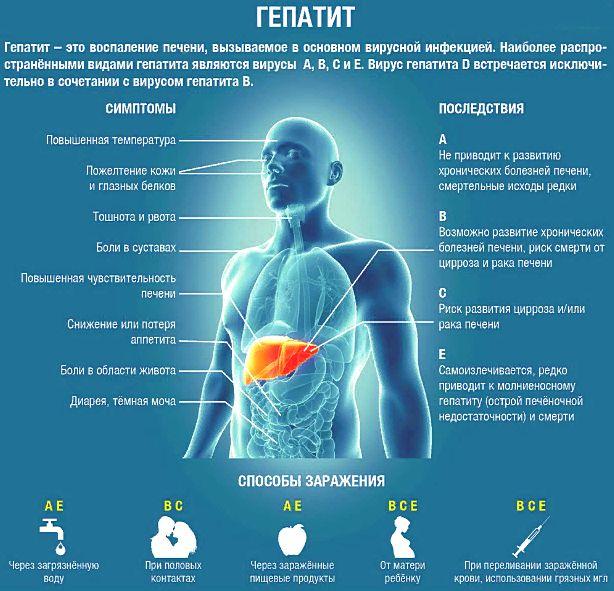 гепатит В, отличие от других гепатитов
