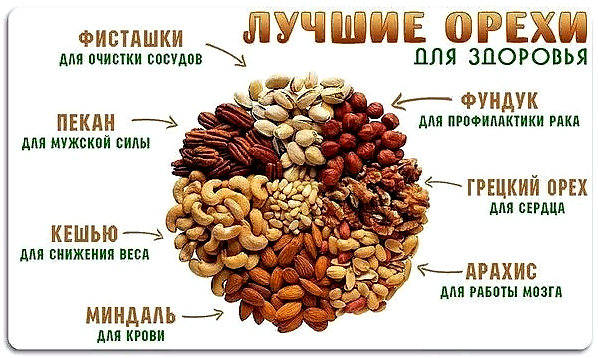 лучшие орехи для здоровья