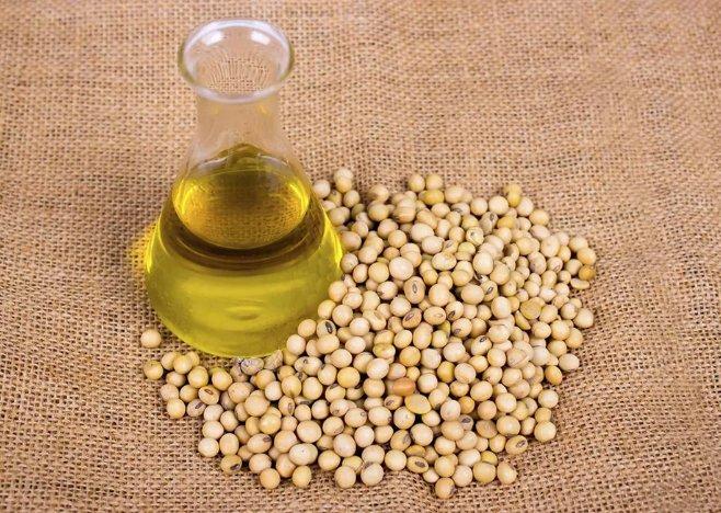 соевое масло - полезные свойства и противопоказания