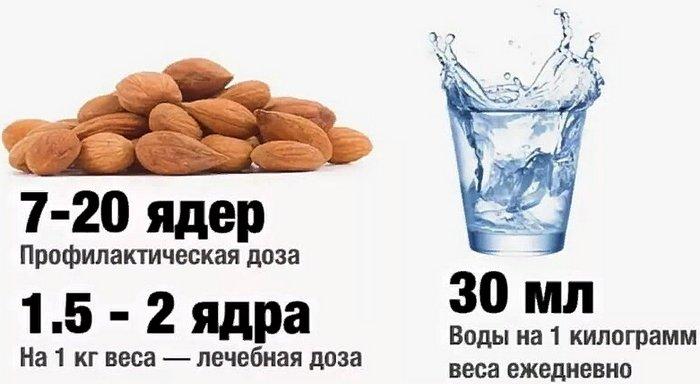 дозы приема витамина В17