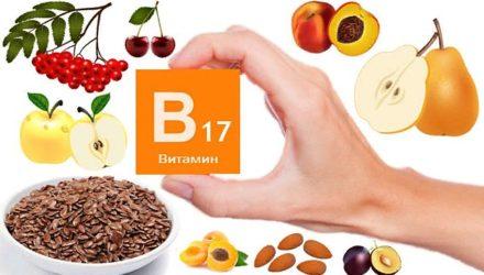 Витамин В17 — для чего нужен, в каких продуктах содержится, применение