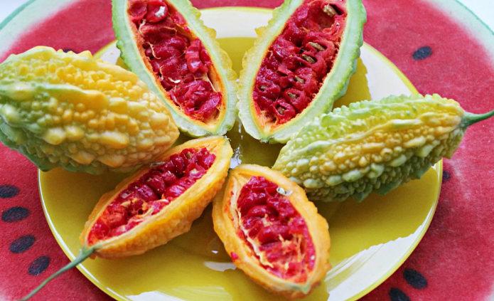 плоды момордики - полезные свойства