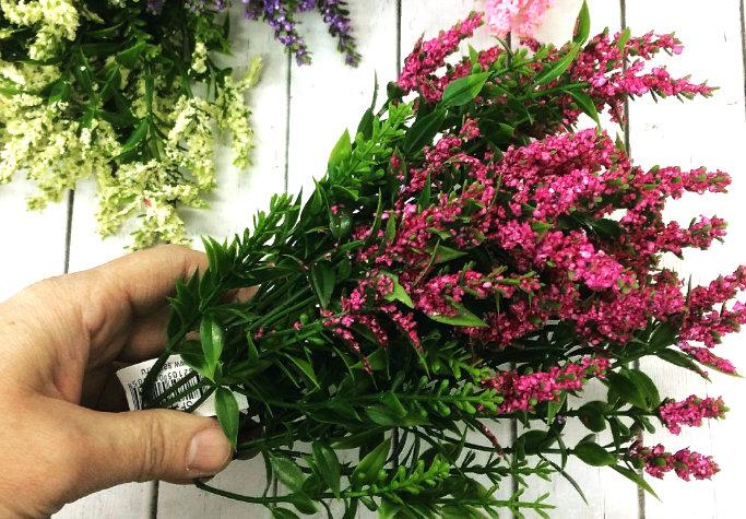 вереск - выращивание и уход в домашних условиях