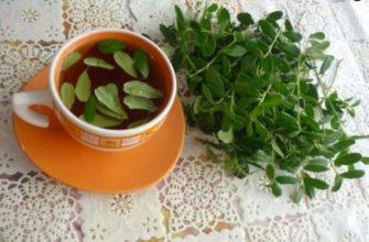 чай из брусничных листьев - польза