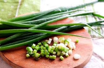 чем полезен зеленый лук для человека