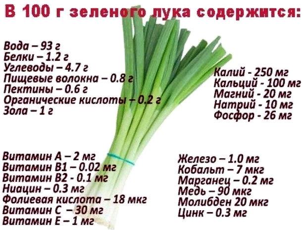 состав зеленого лука