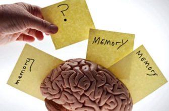 как возвратить память после инсульта